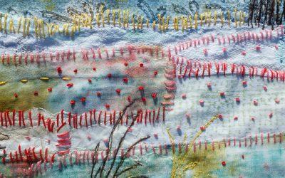 expositie Kunstkamer Marum